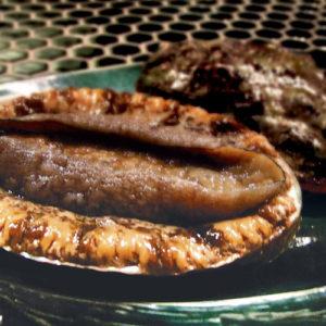 あわびとステーキのコース 蘭-らん-